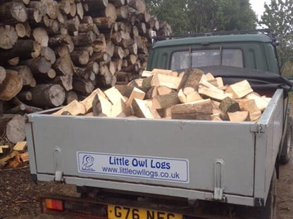 Truck Full of Logs